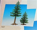 One Tall and One Short Fir Trees