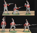 British Infantry 1815 - Collector Painted Version