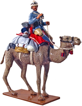 Officer Grenadier Guards Camel Regt - 1884-1885