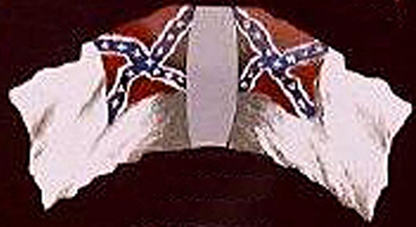 Confederate 2nd National Flag