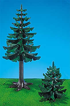 One Large and  One Small Pine Tree