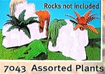 Five Plants for Rock Formations